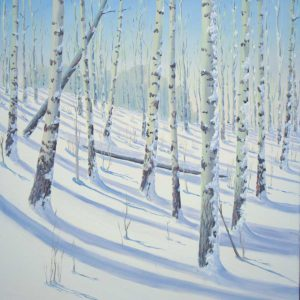 Aspen Snow Shadows